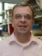 Headshot of David Wilkes