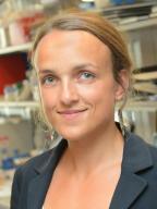Joanna Cyrta, MD